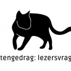 kattengedrag-featured