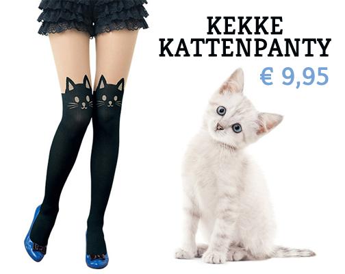 kattenpanty