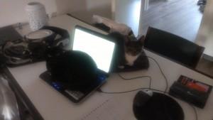 Foto is van wat mindere kwaliteit, maar het effect is hetzelfde. Laptop out of order. Het is E-TENS-TIJD!