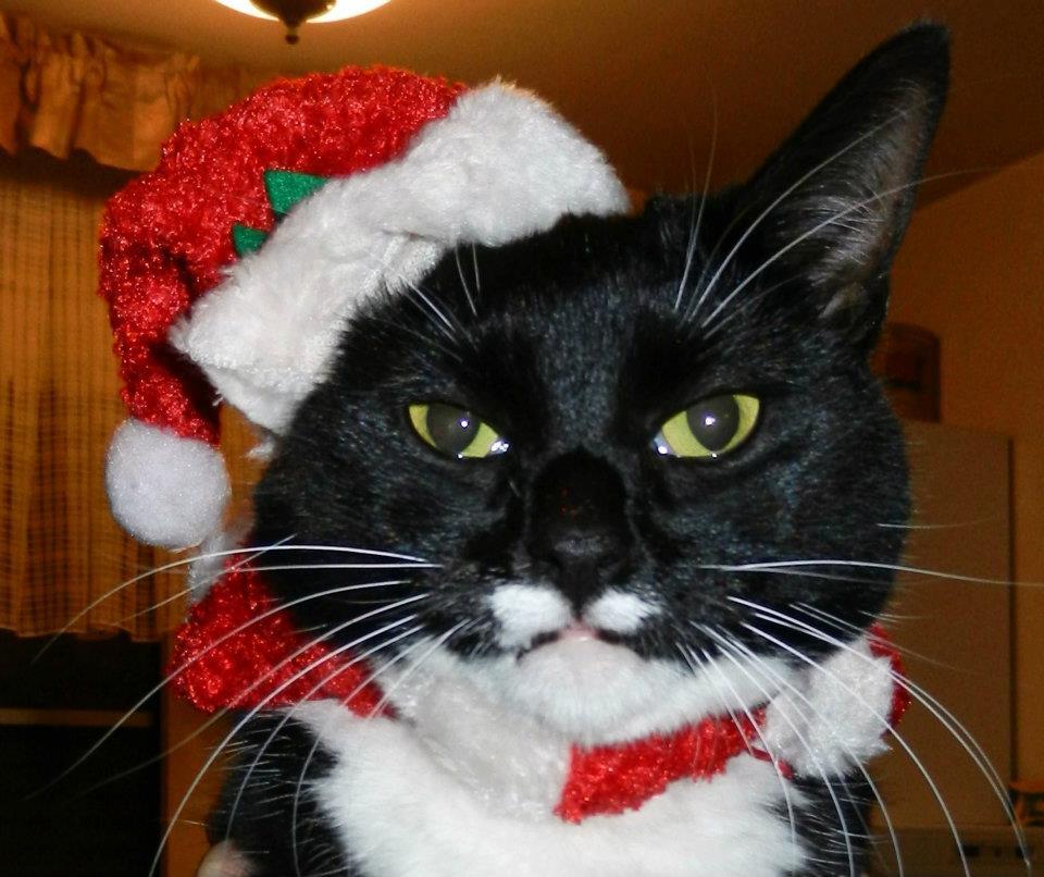 Micky-Kerst