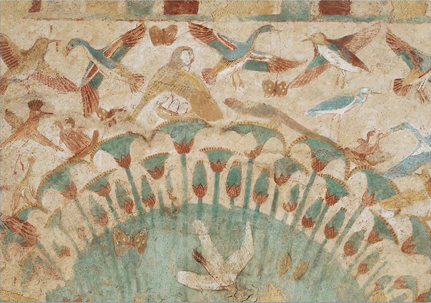 Moeraskat bij de Nijl