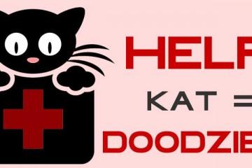 Help! Kat = doodziek