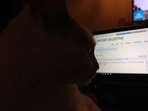Bewijsstuk A: Lola voor de laptop