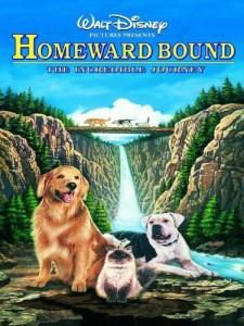homeward-bound-film