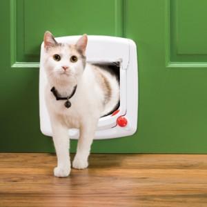 magneet kattenluikje